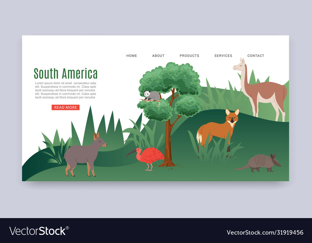 Inscription south america colorful web banner