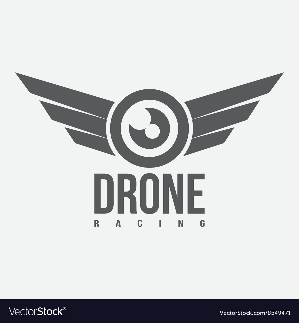Black and white drone racing logo vector image