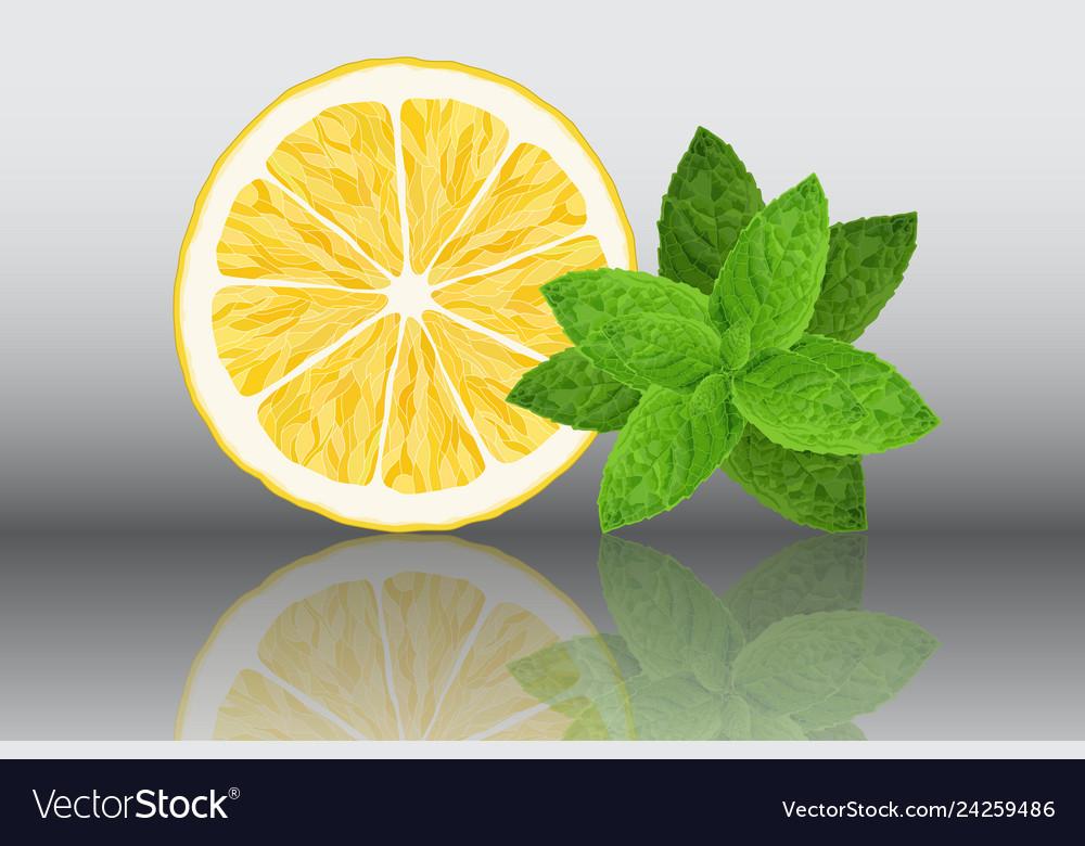 Lemon and mint reslistic on