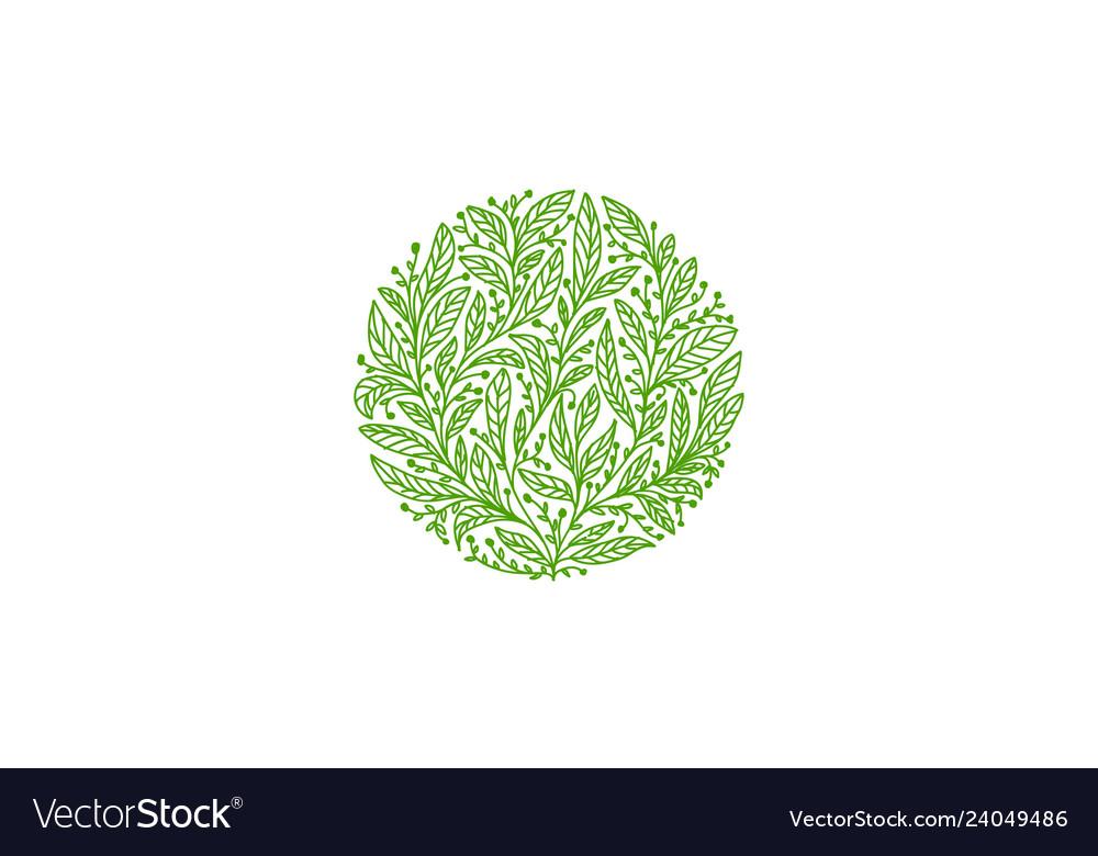 Organic leaf logo tea logo