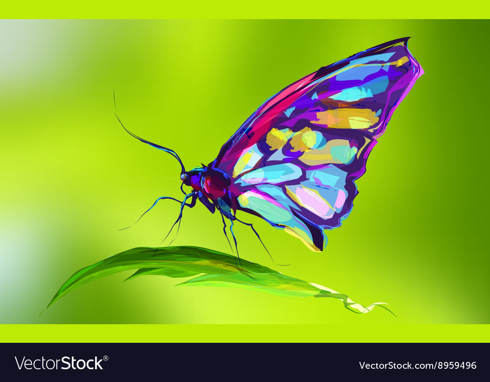 The cute colored butterfly on grass