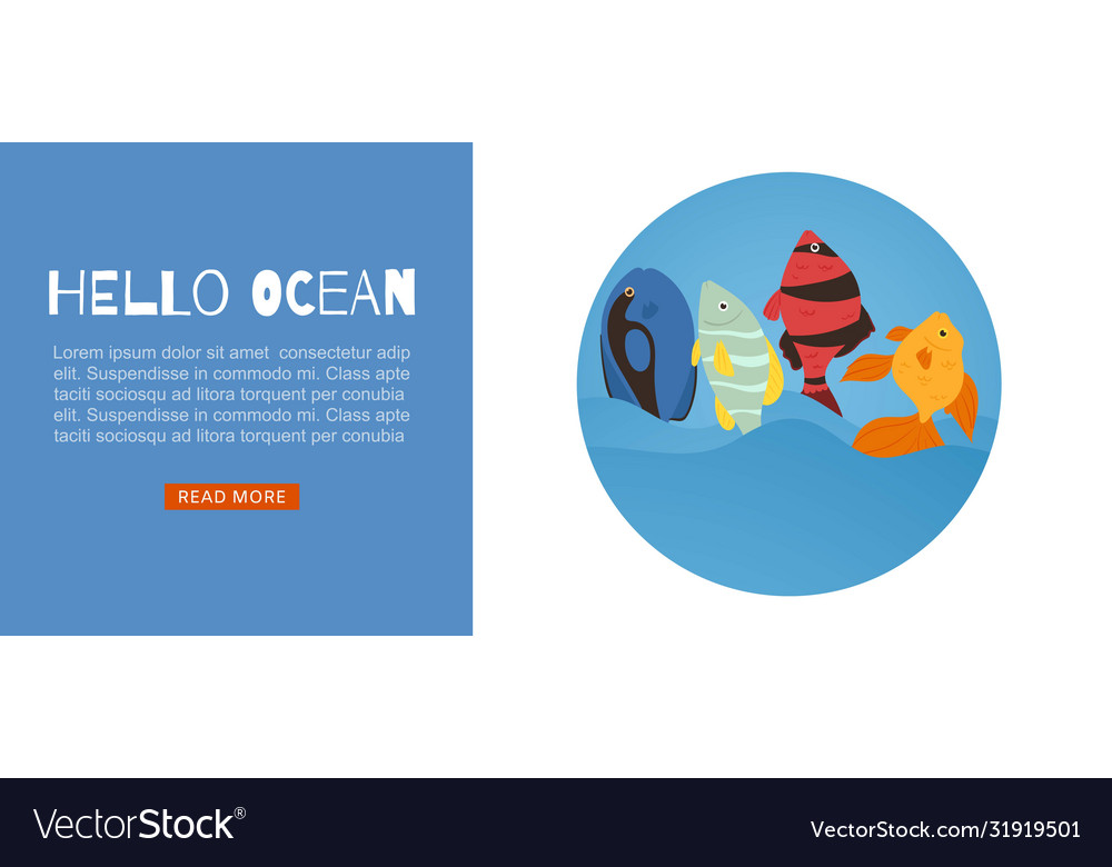 Tropical fish coral reef for travel agency web