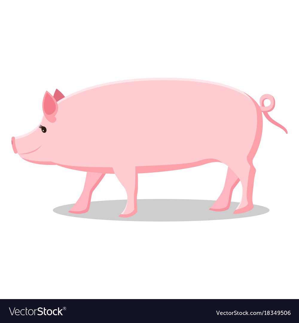 Pink pig with curly tail isolated