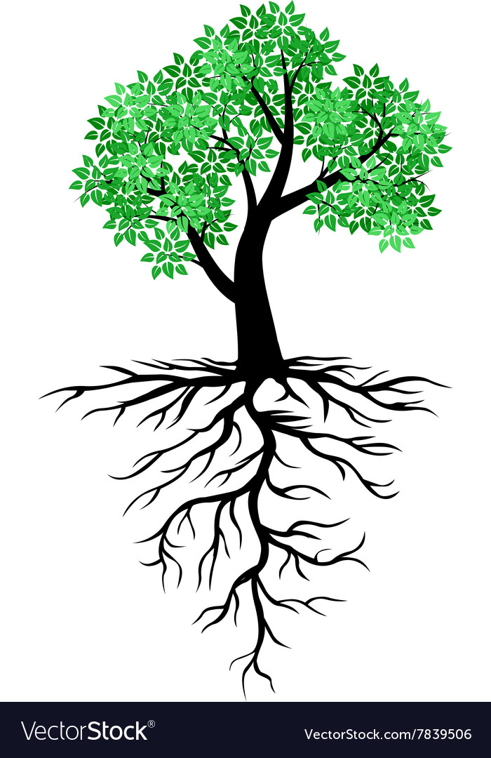 tree root royalty free vector image vectorstock rh vectorstock com transparent tree with roots vector tree with roots vector free