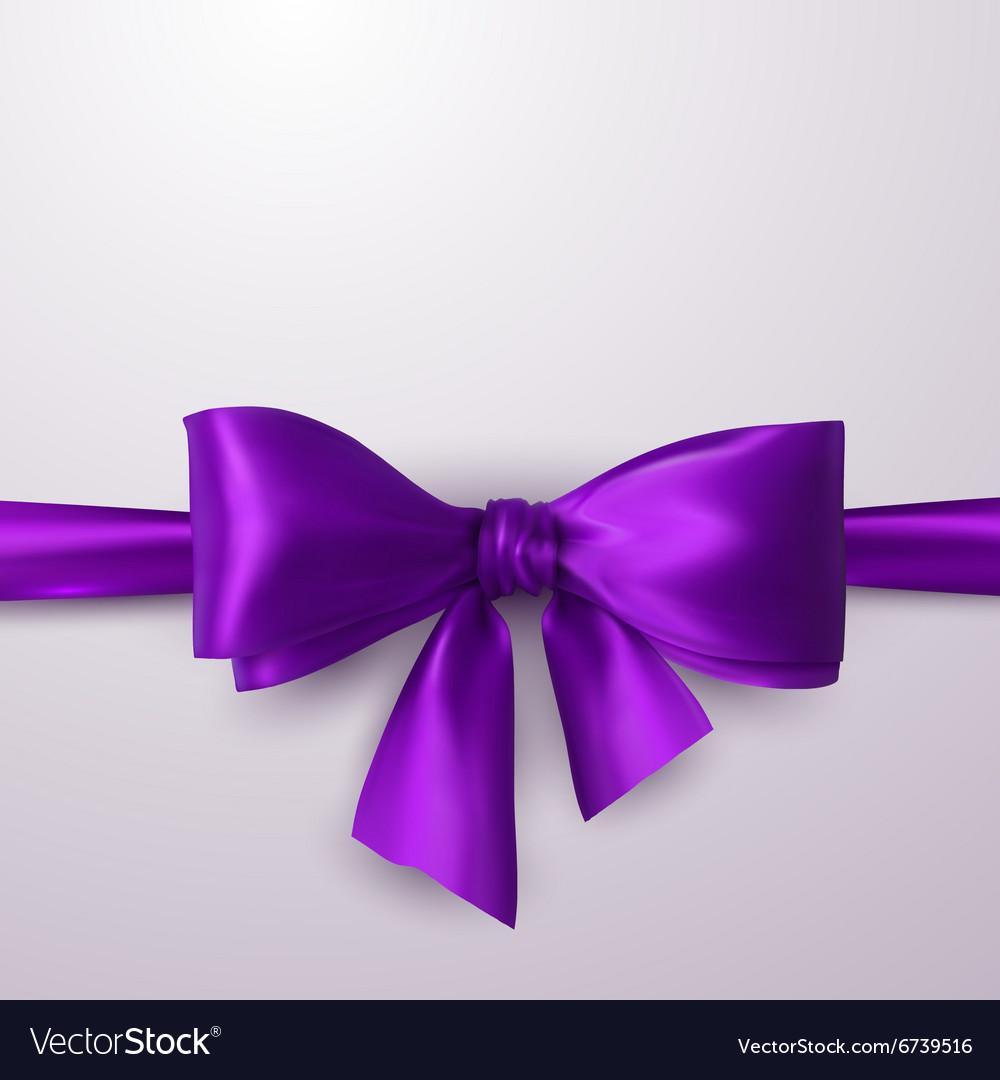 Purple Bow And Ribbon vector image