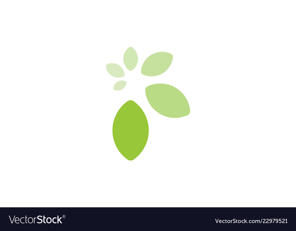 Green leaf logo designs inspiration isolated on