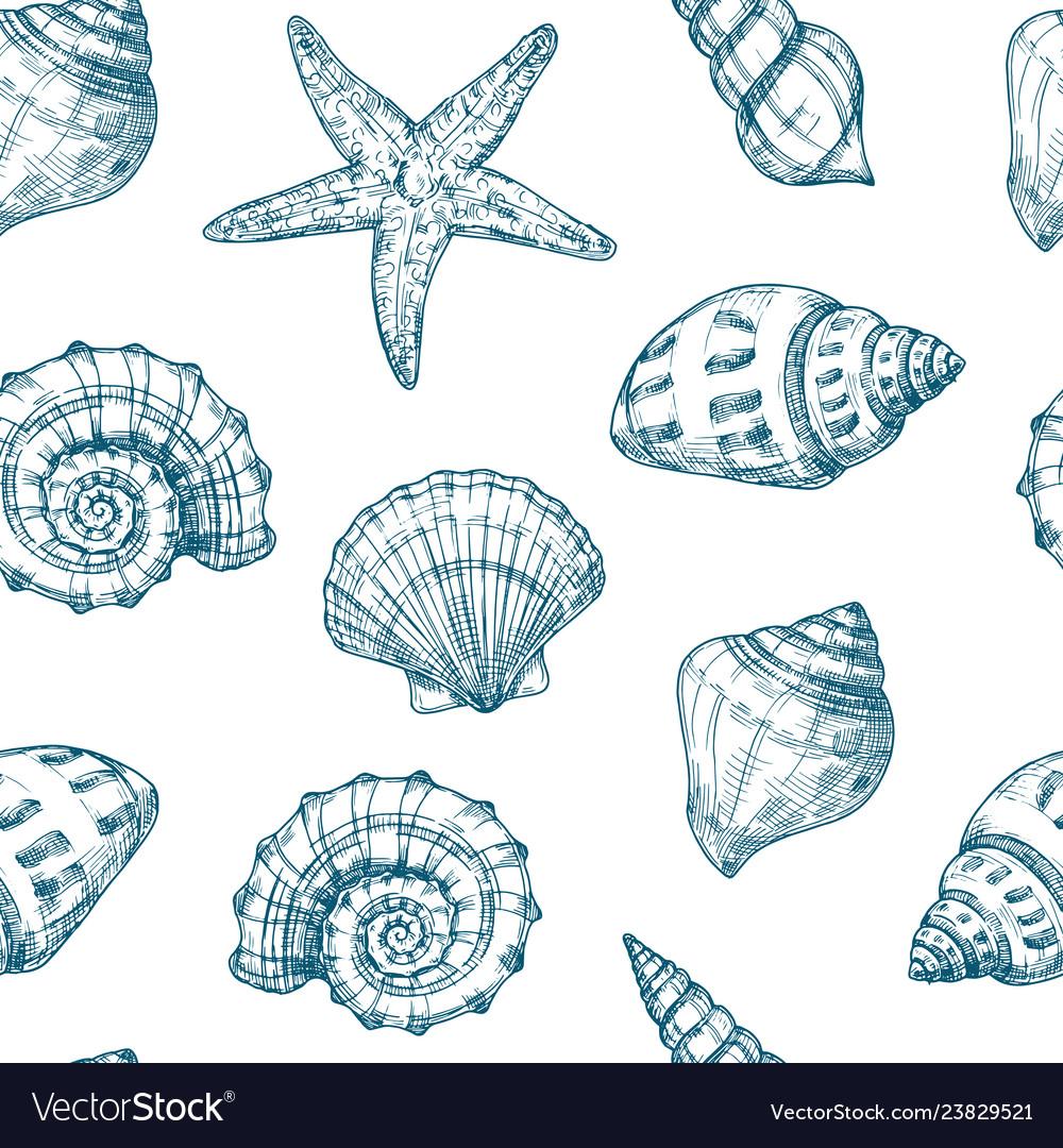 Seashells seamless pattern sea shell summer ocean