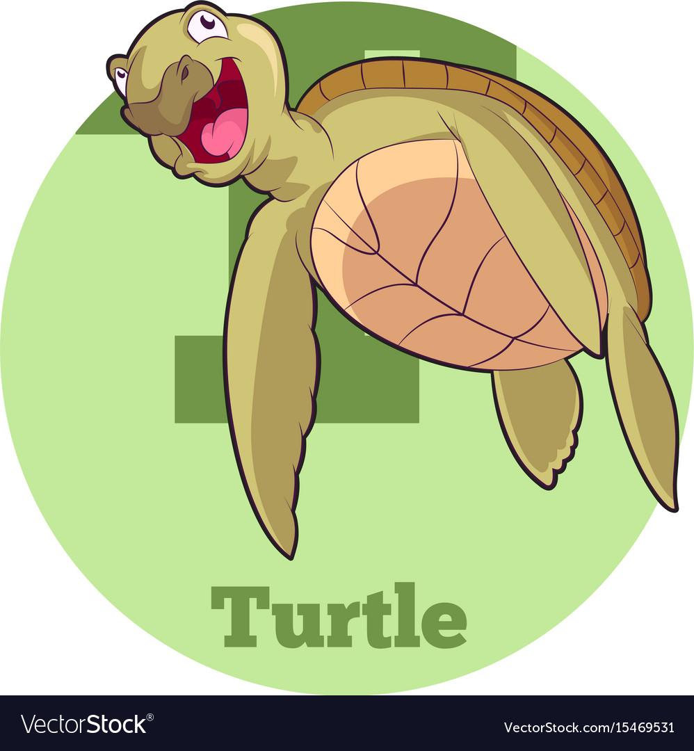 Abc cartoon turtle5