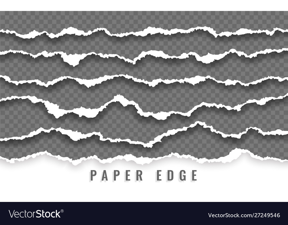Torn paper edge ripped squared paper strips