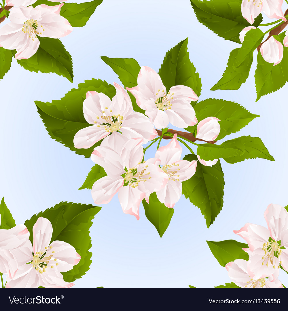 Seamless texture twig of apple tree with flowers
