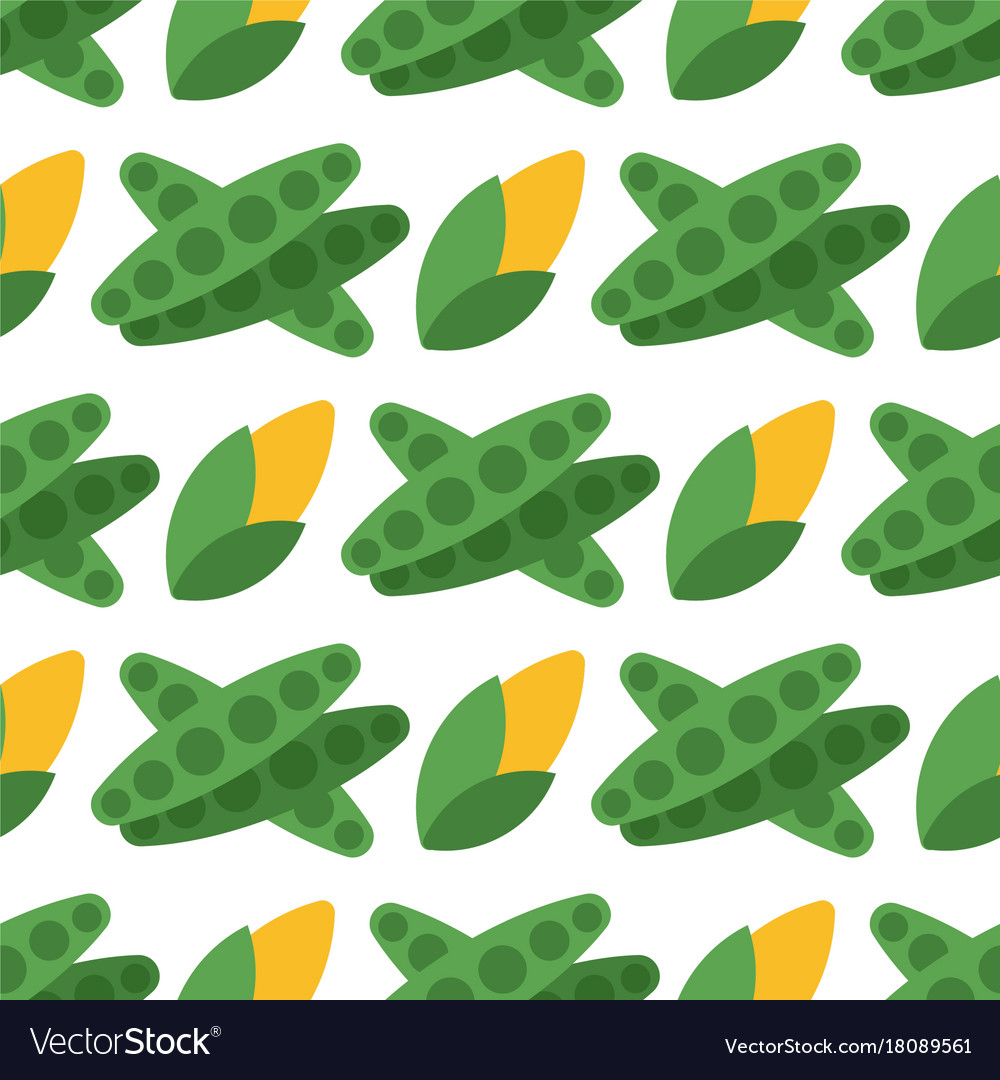 Cabbage seamless pattern background for food