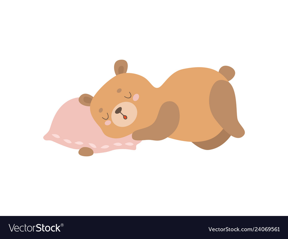 Cute baby bear animal sleeping on pillow