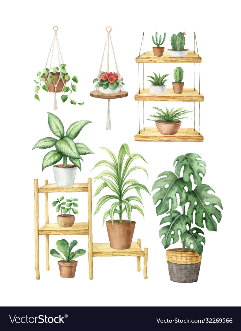 Watercolor Aesthetic Room Decor And Indoor Vector Image