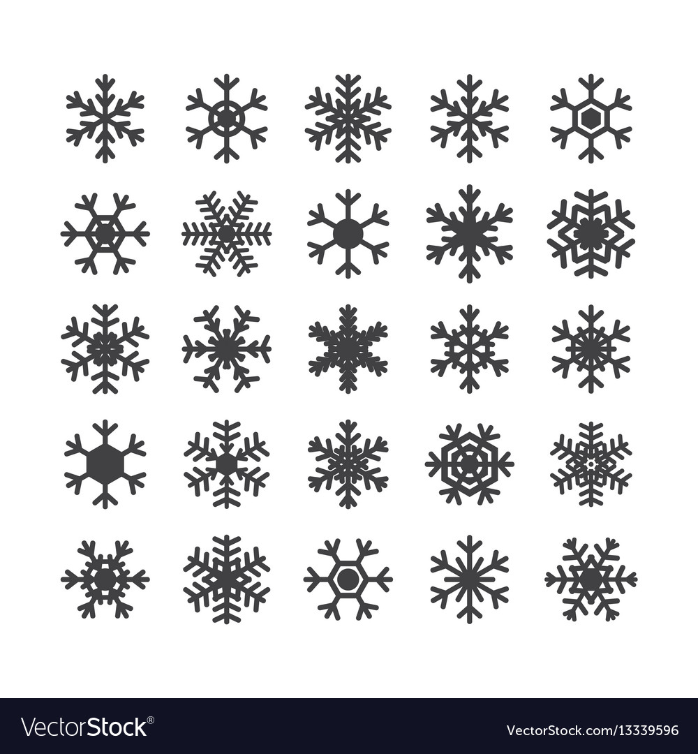 Set of different snowflakes isolated on white vector image