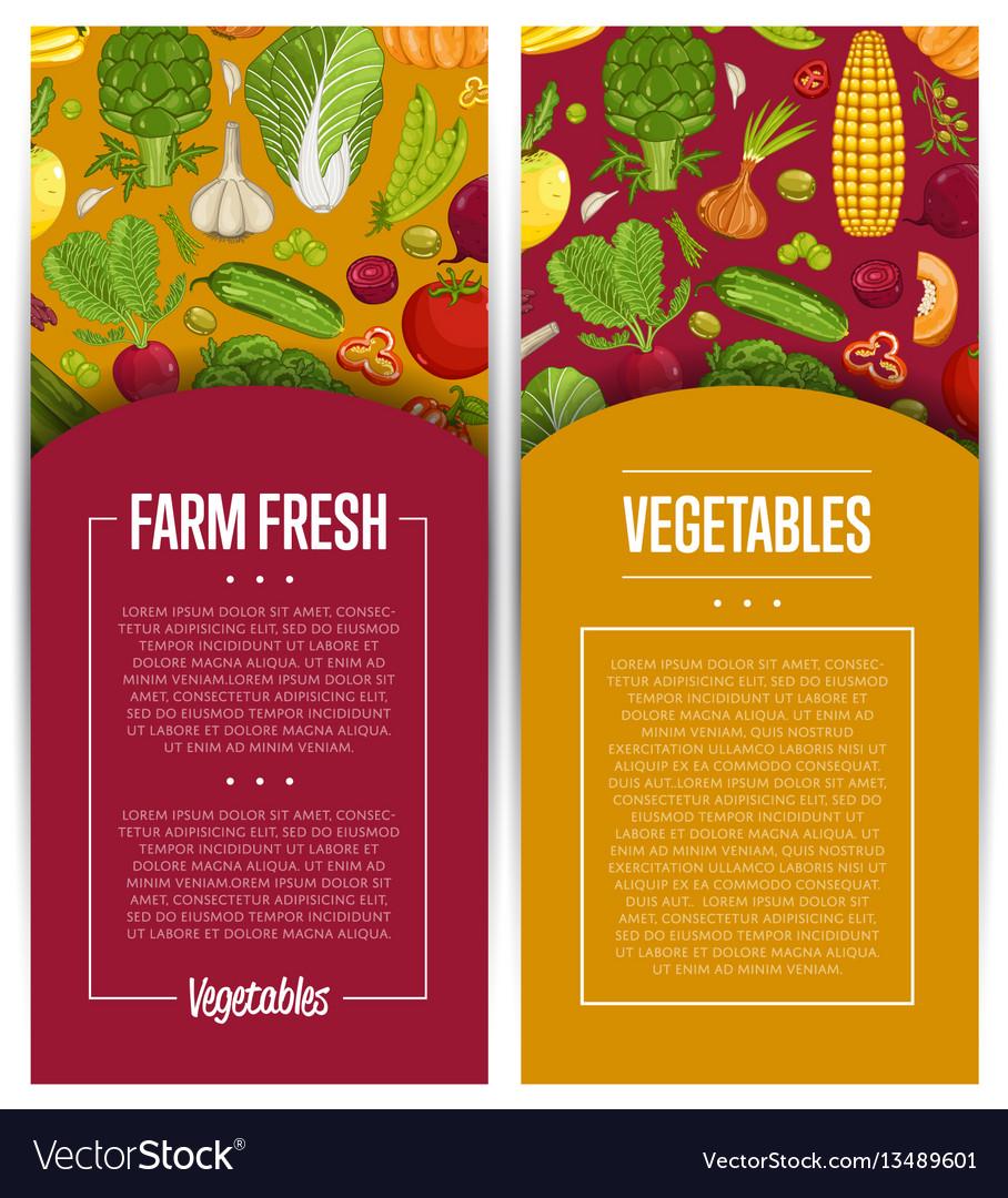 Fresh vegetable farming flyers set vector image