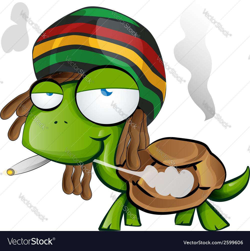 Jamaican tortoise cartoon on white background vector image