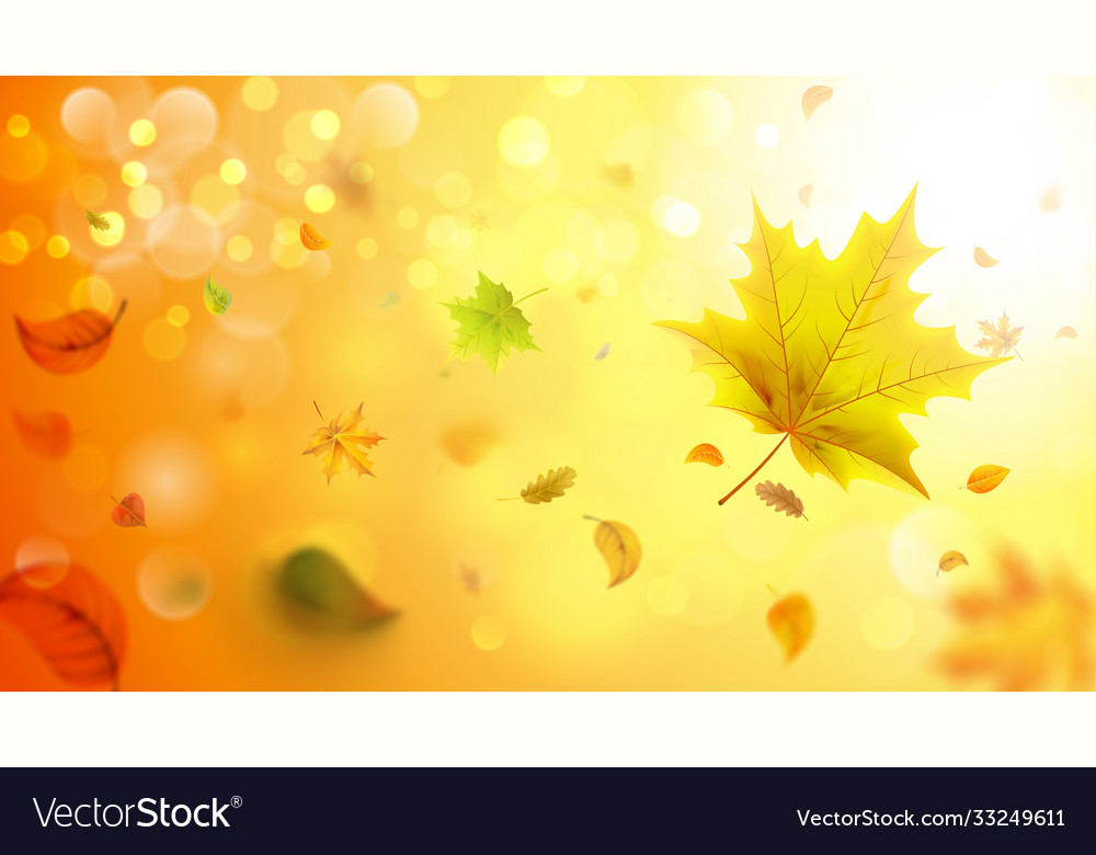 Autumn blurred background with falling leaves