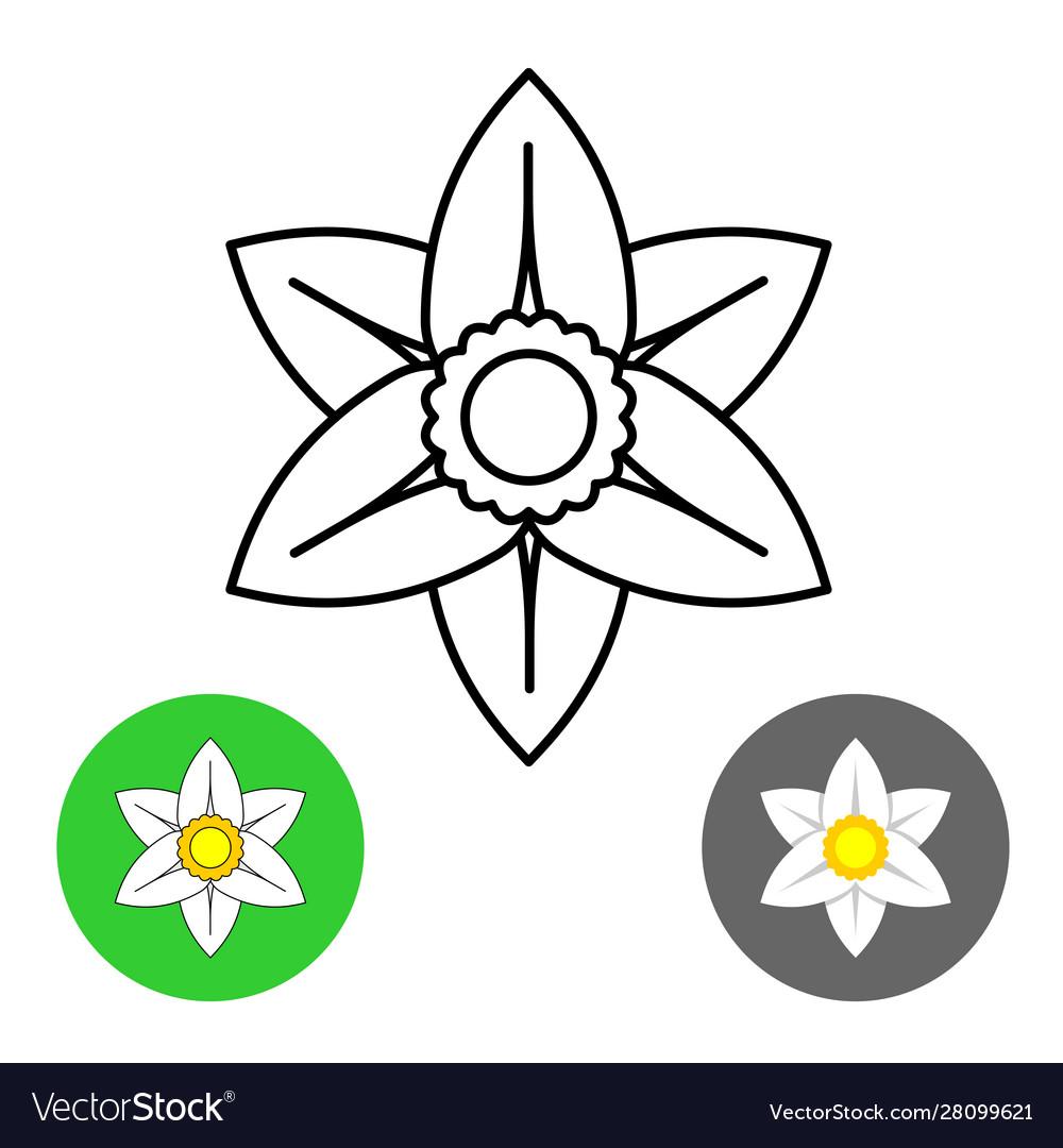 Narcissus flower thin line style logo black