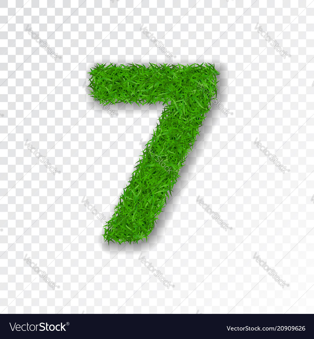 Grass number seven green number 7 isolated on