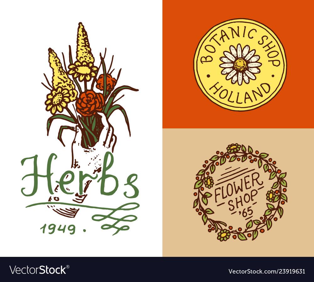 Flower shop emblems and bright logo vintage