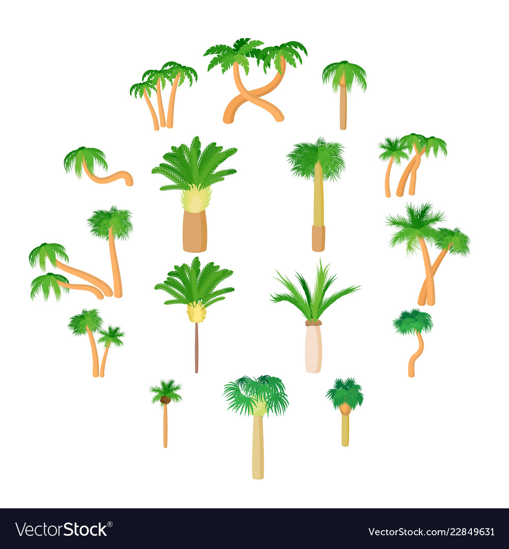 Palm icons set cartoon style