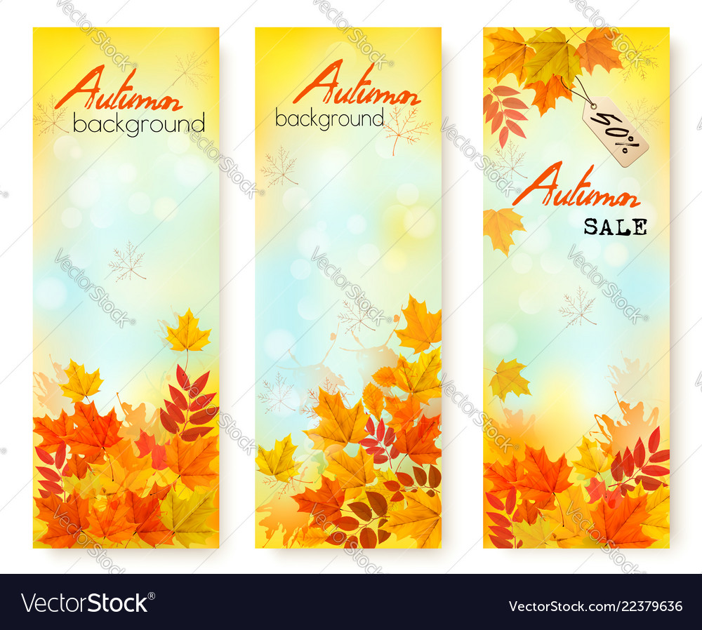 Three autumn sale banners with colorful leaves