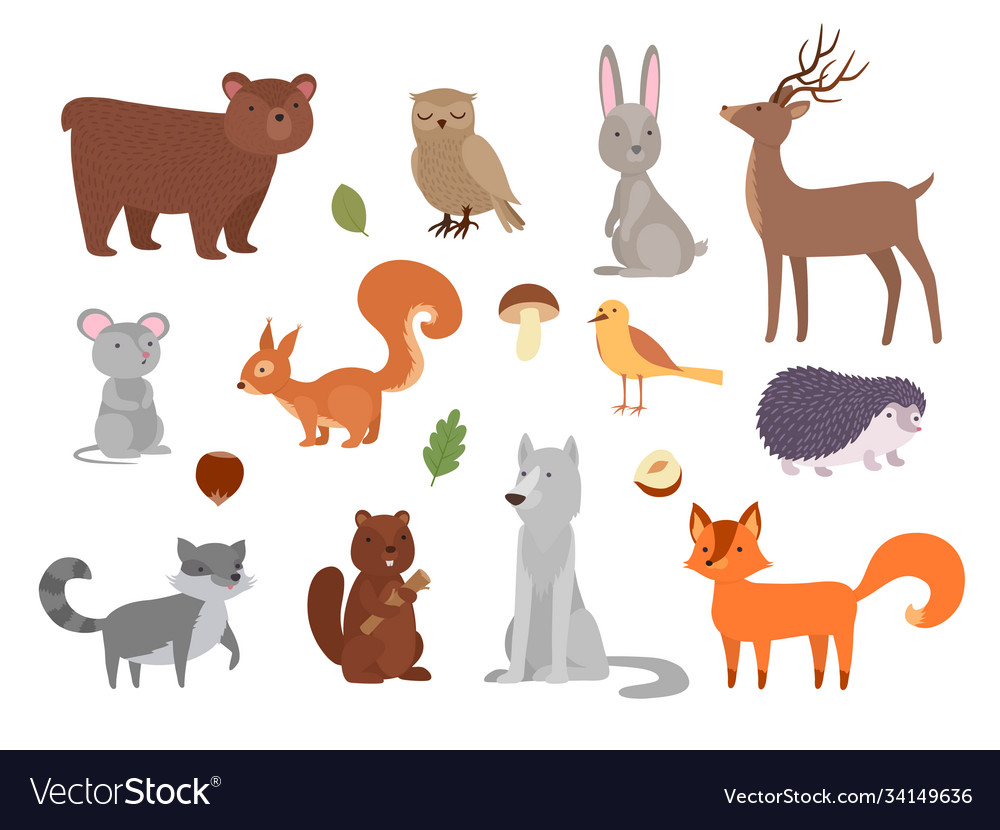 Wood animals cute wild characters in forest fox
