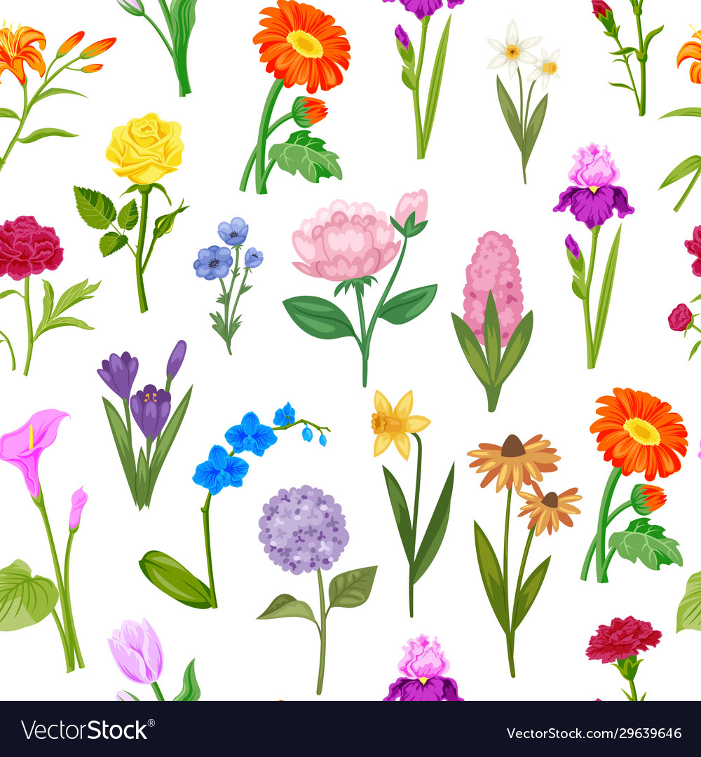 Summer flowers for floral background and wrapping