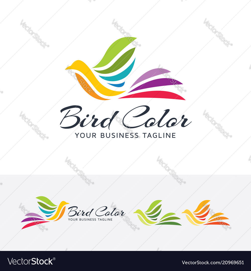 Bird color logo design
