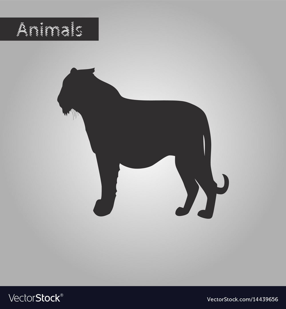 Black and white style icon of tiger vector image