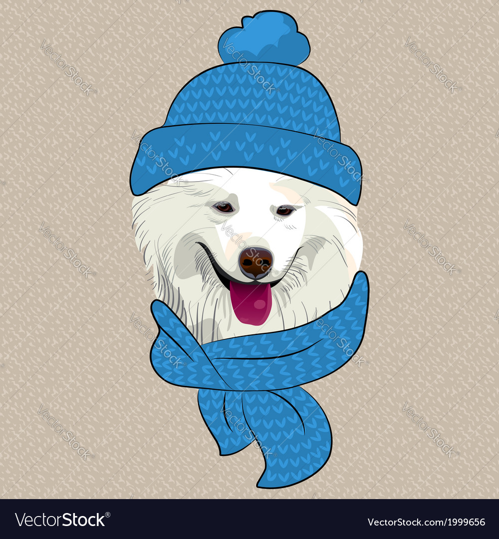Hipster Samoyed dog smile