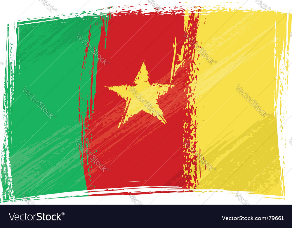 Grunge Cameroon flag vector image