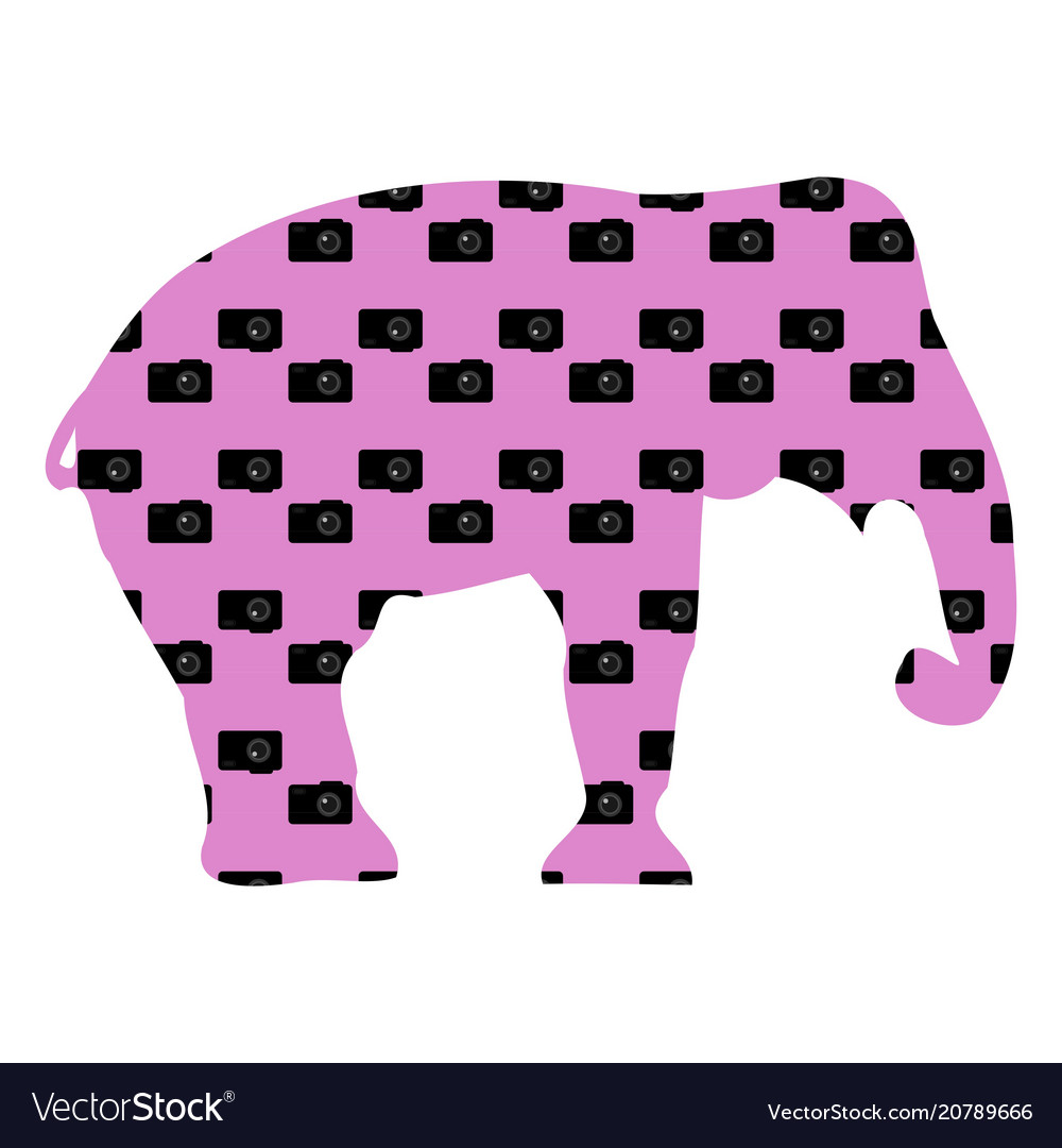 Elephant silhouette on a purple background with vector image