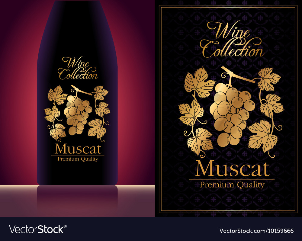 wine label template royalty free vector image vectorstock