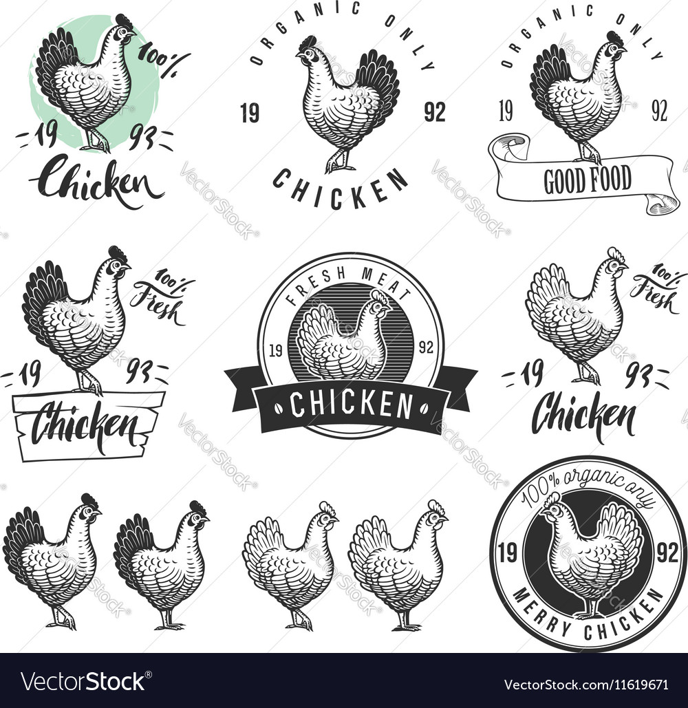 Chicken product logotypes set Hen meat and eggs