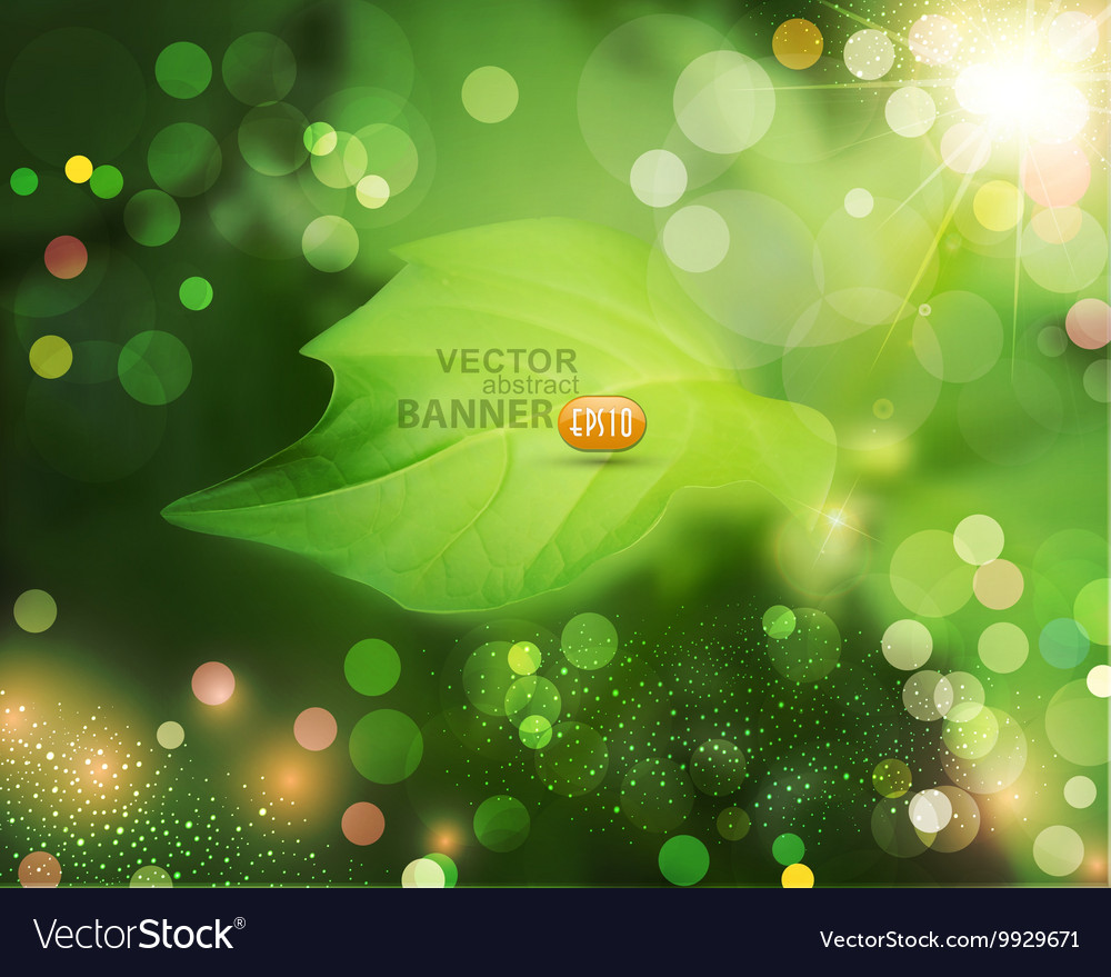 Summer background with green blur and leaf