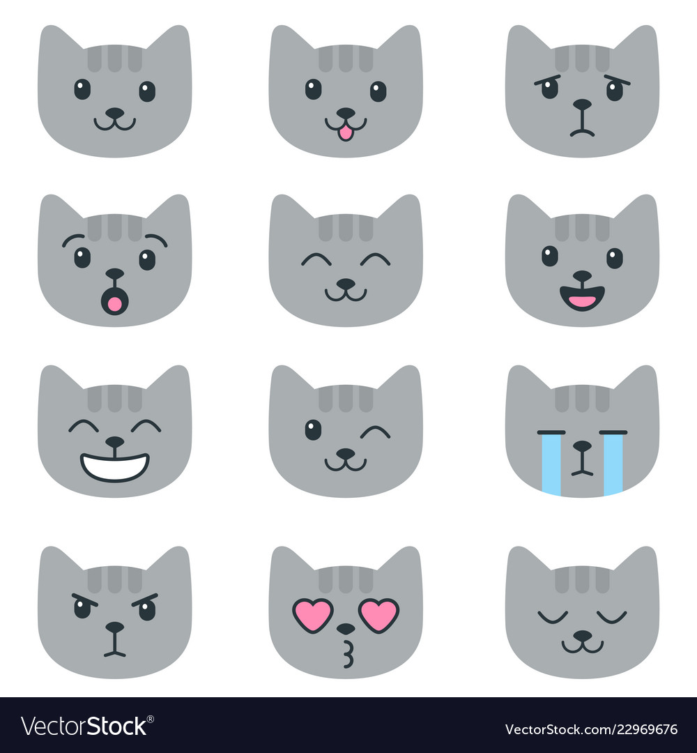 Grey cats with different emotions isolated on