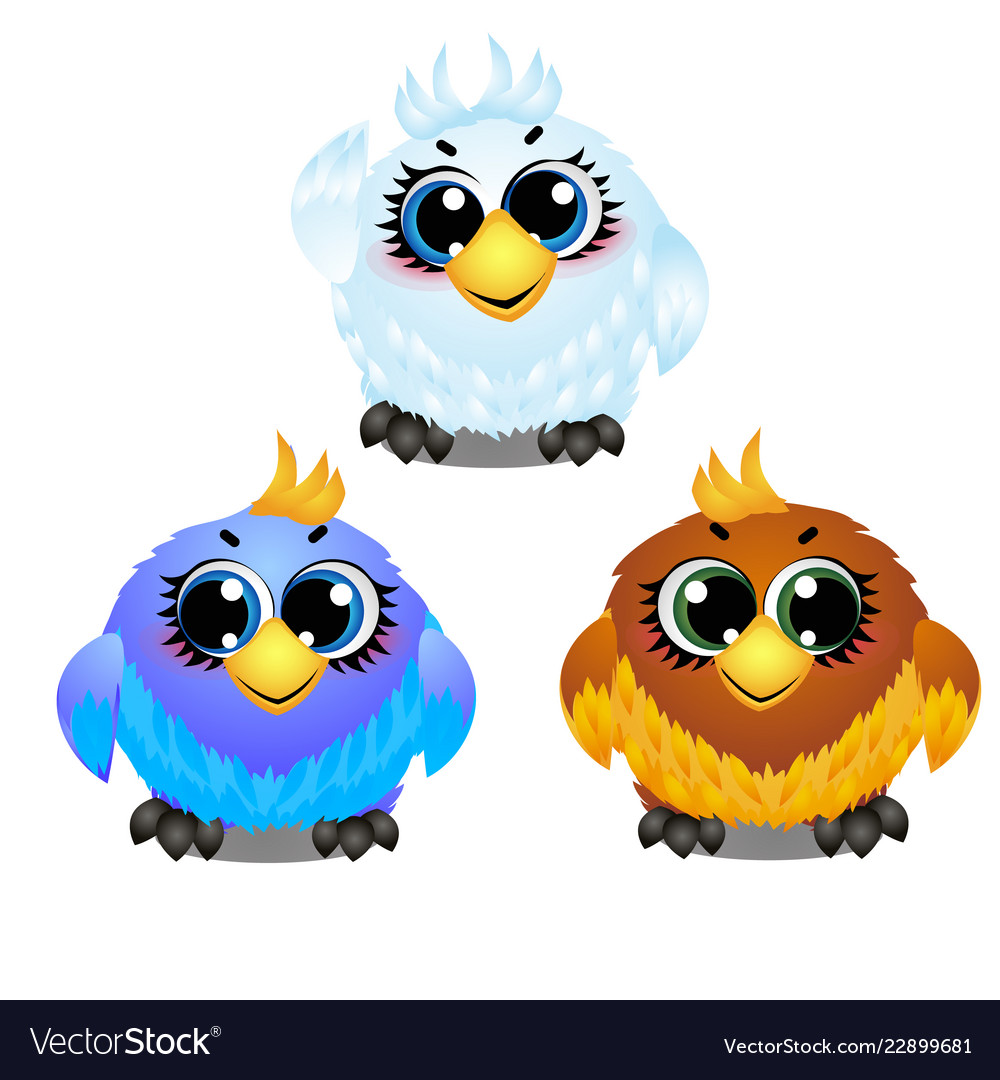Set of funny colorful animated birds with big
