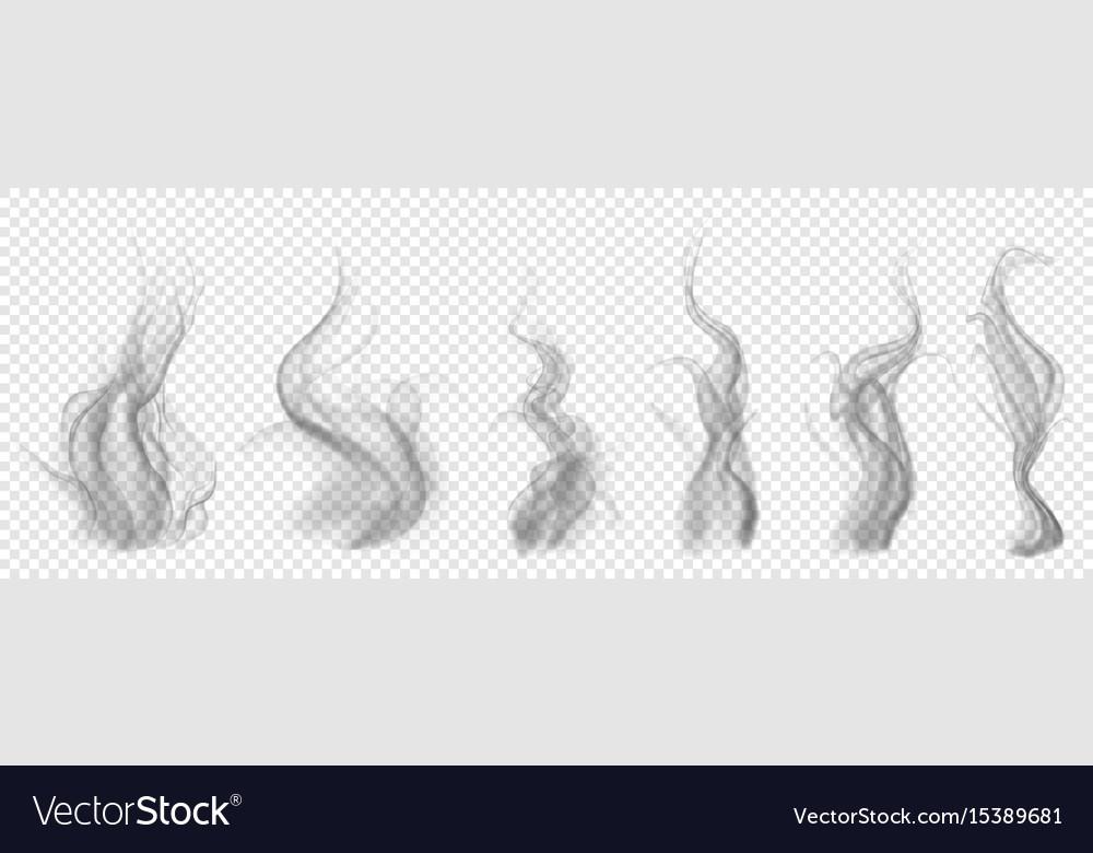 Set of translucent gray smoke vector image