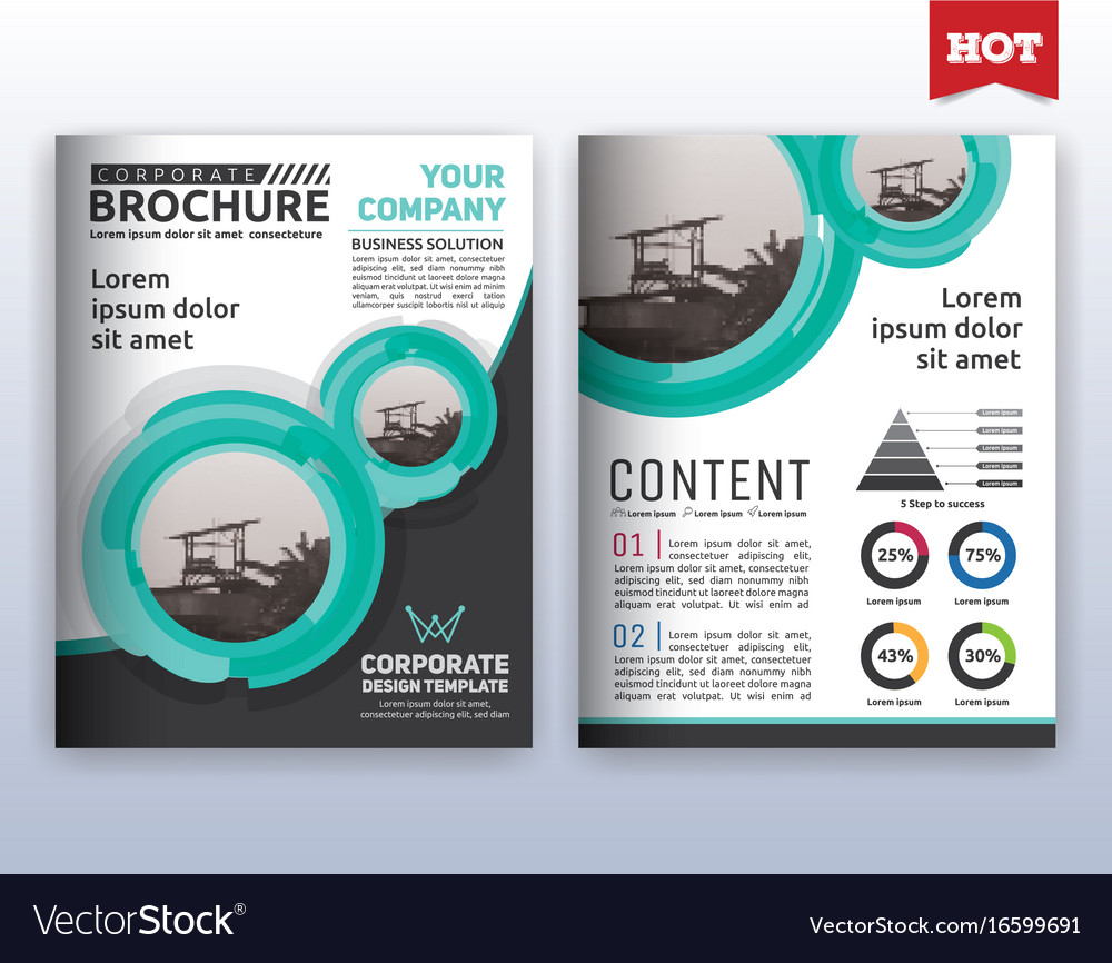 modern corporate business flyer layout template vector image