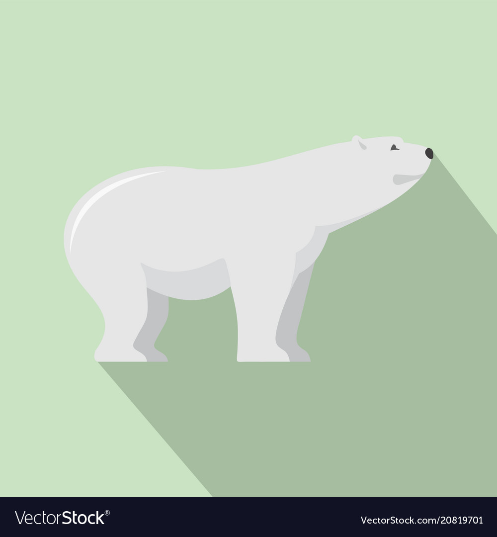 Watching of polar bear icon flat style