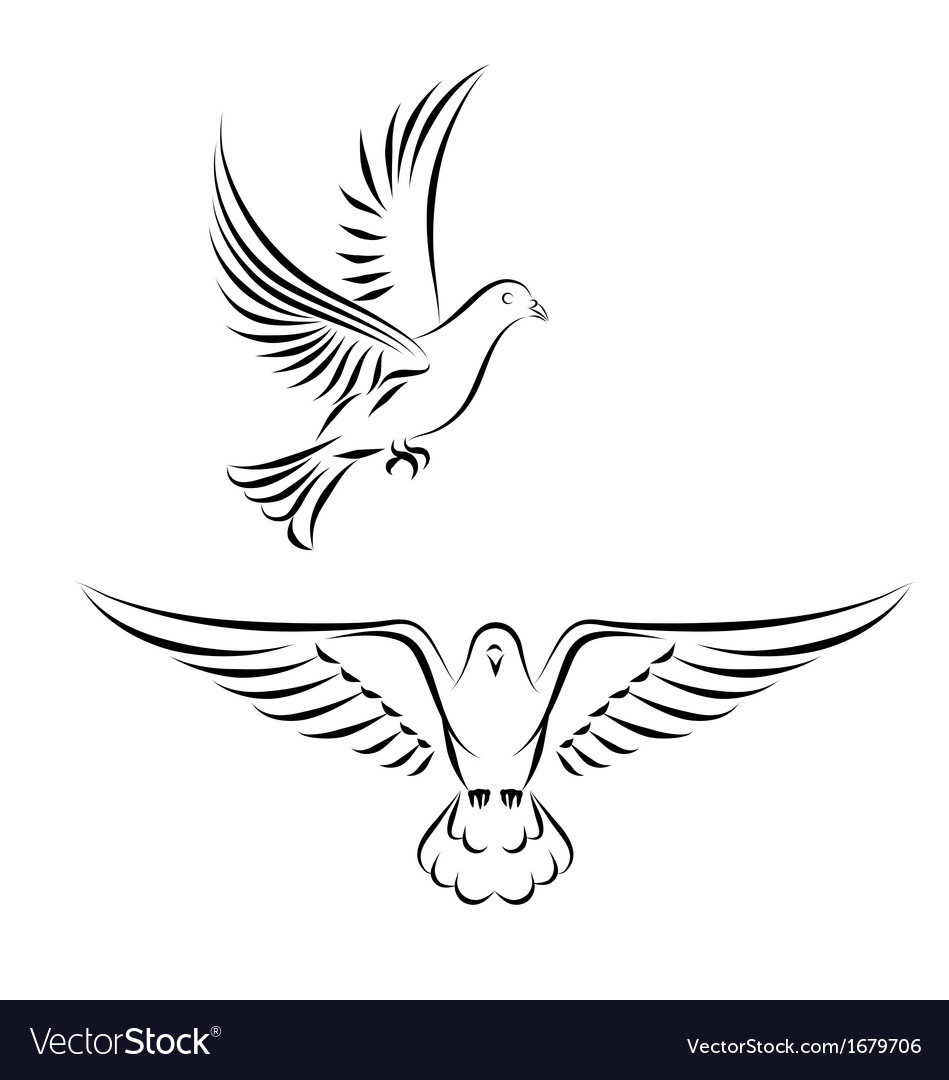 stylized dove royalty free vector image vectorstock rh vectorstock com dove vector files dove vector art