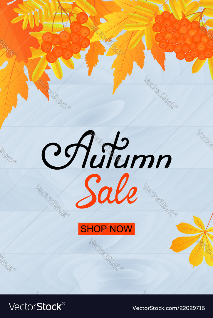 Autumn sale poster design with yellowed leaves and