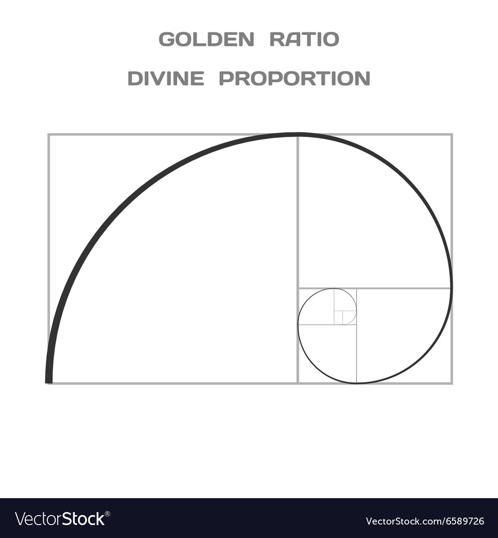 golden ratio divine proportion ideal section vector image rh vectorstock com golden ratio spiral vector golden ratio vector illustrator