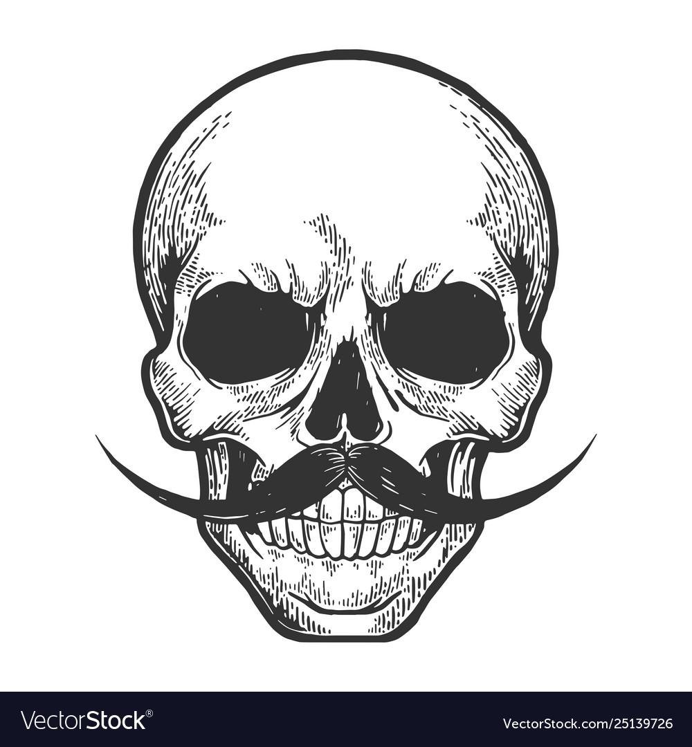 Human skull sketch engraving
