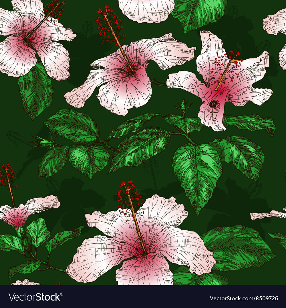 Seamless Floral Pattern with Hibiscus Flowers