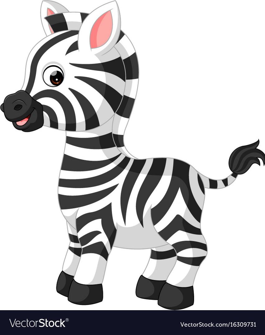 cute zebra cartoon royalty free vector image vectorstock