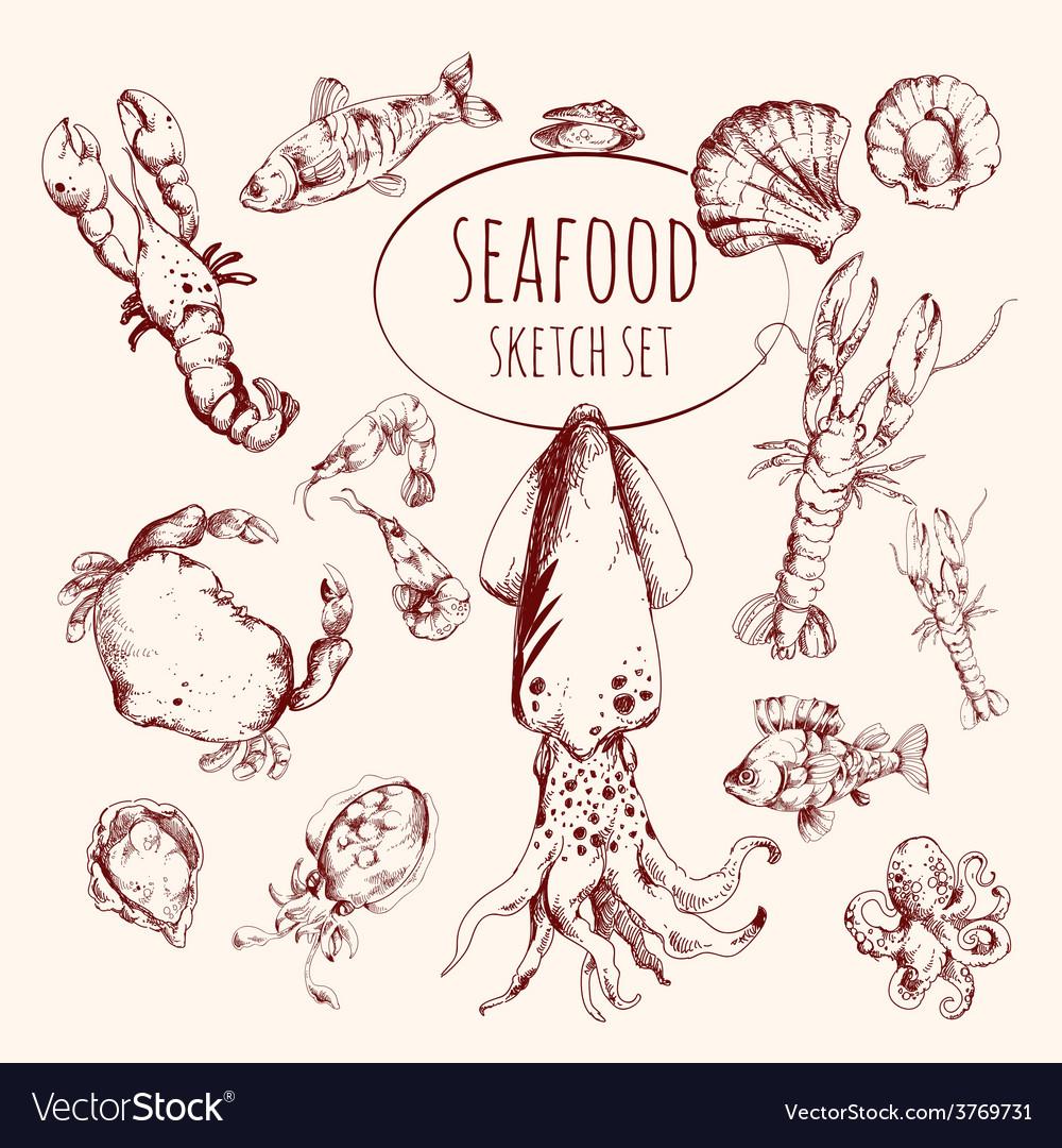 Seafood Sketch Set
