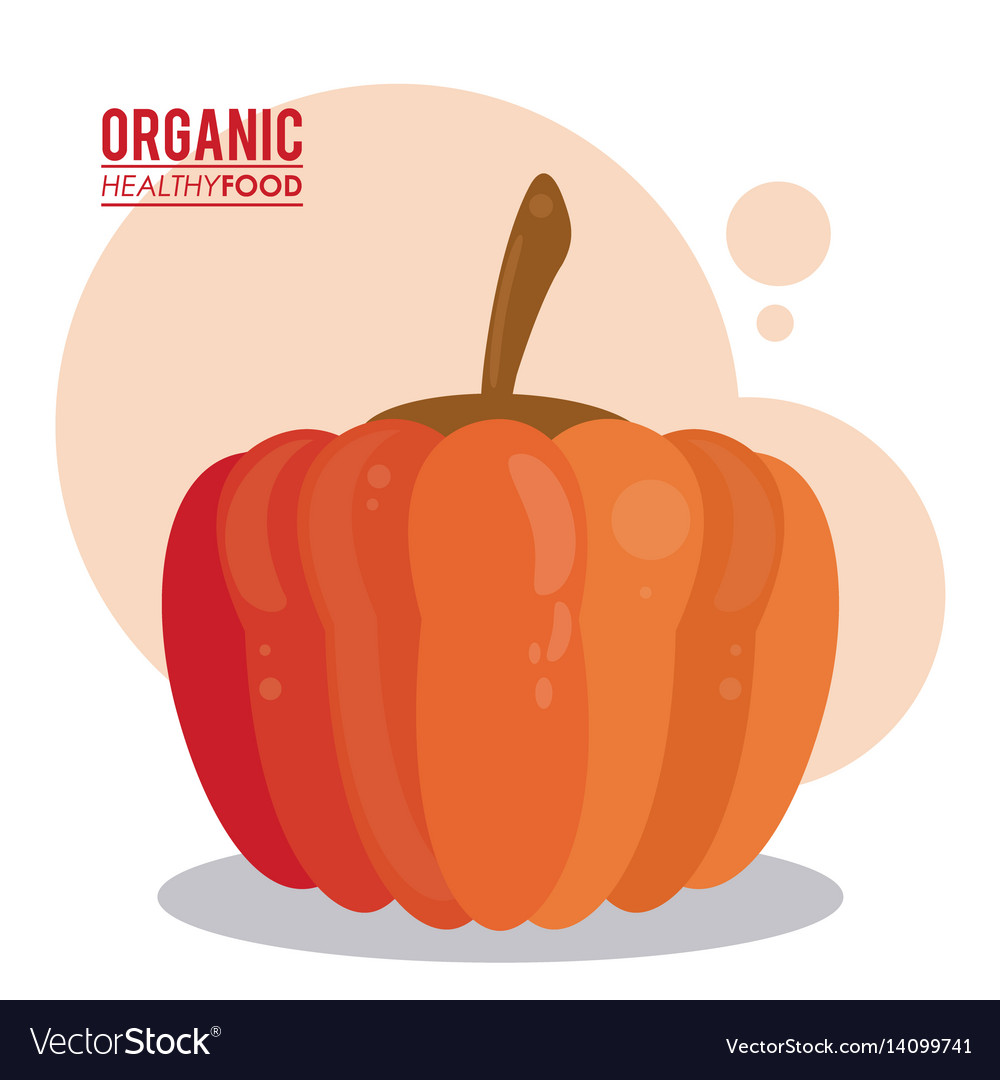 Organic healthy food pumpkin raw