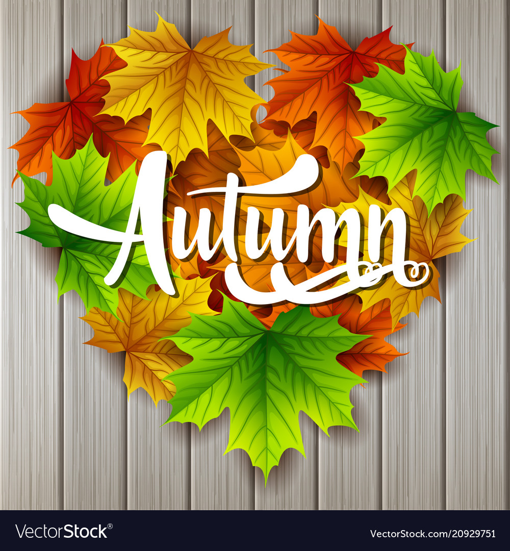 Autumn sale banner with colorful leaves